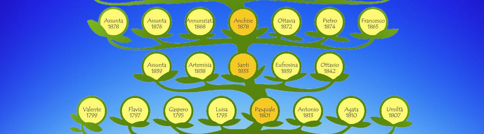 albero-genialogico-25